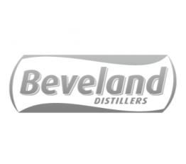 Javier Debarnot copy creativo SEO contenidos clientes logo Beveland